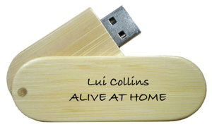Alive At Home USB drive